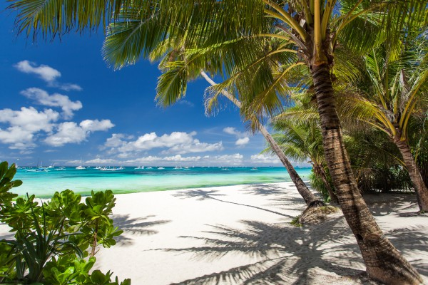 bahamas  tengerpart