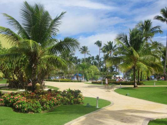 dominikai köztársaság séta a fák között
