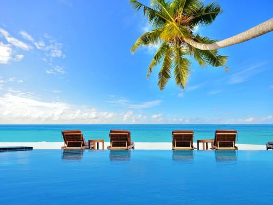 maldív szigetek medence és napozó ágyak belógó pálmafával