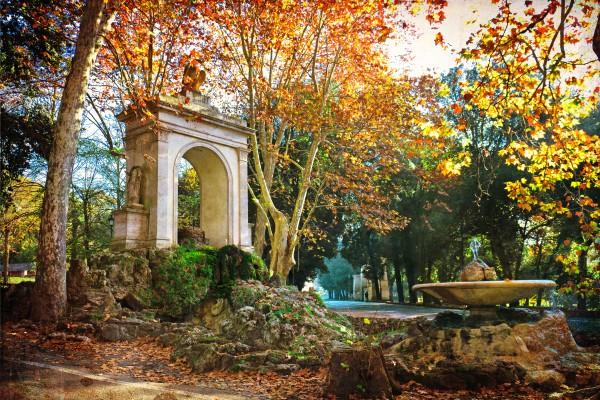 olaszország színes fák épület