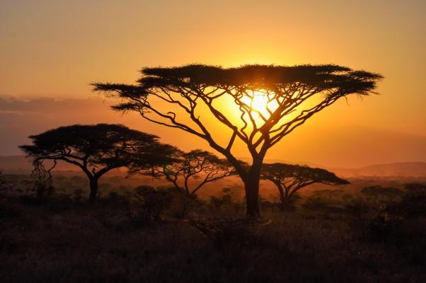 kenya afrikai naplemente